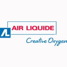 Air Liquide Electronics U.S. LP